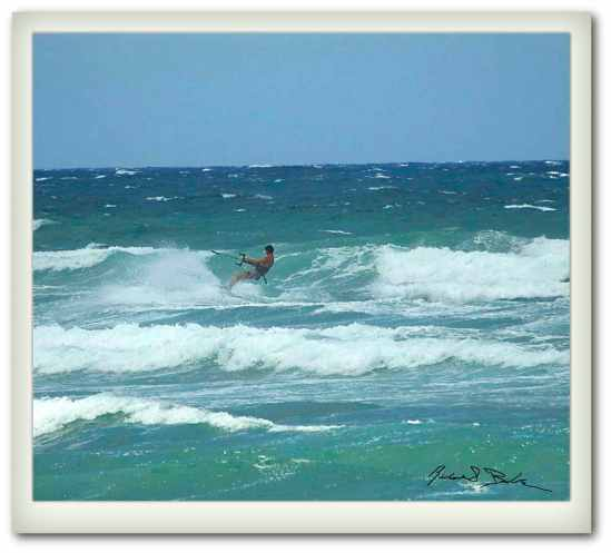 Wind Surfing in Maui