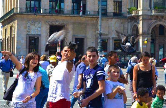 Pigeons of Milan