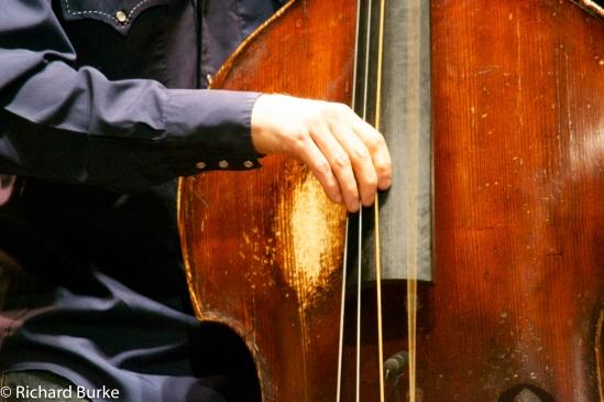 Candidate #15--Bass Hands