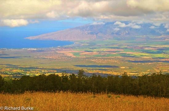 The Road to Haleakala