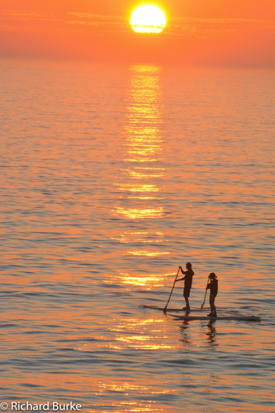 Long Board at Sunset Beach
