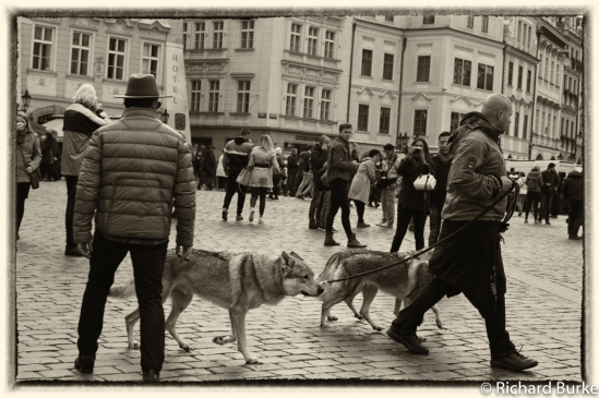People of Prague #3